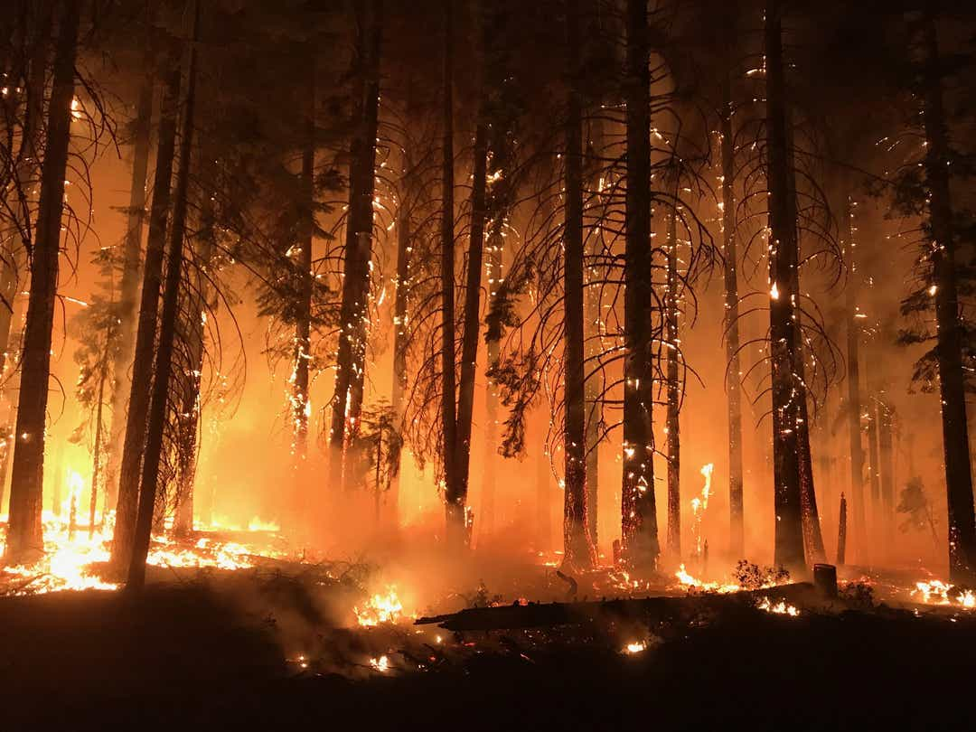Pacific Gas & Electric to pay $1 billion for California wildfires
