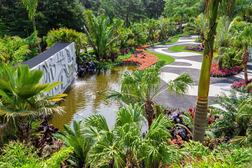 """Brazilian Modern: The Living Art of Roberto Burle Marx"" at the New York Botanical Garden. Photo courtesy of the New York Botanical Garden."