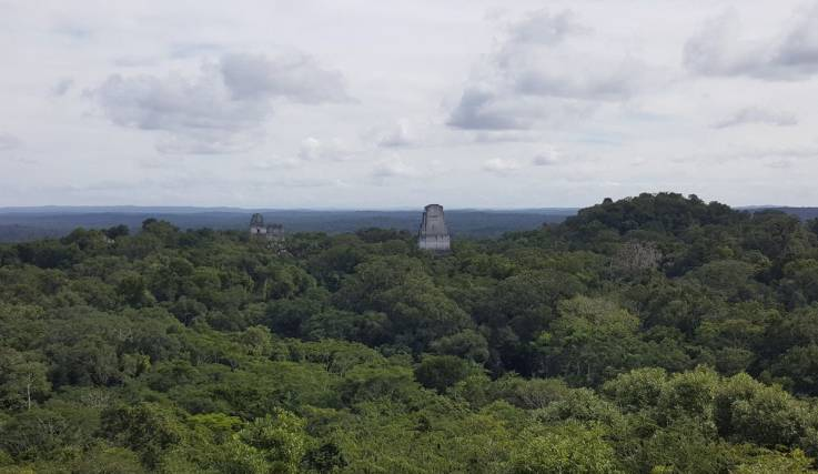 An aerial view of Tikal. Photo courtesy of Marcello Canuto.