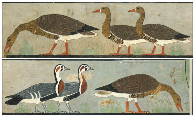 It Turns Out That an Ancient Painting Known as 'Egypt's Mona Lisa' Actually Depicts an Extinct Breed of Goose | Artnet News