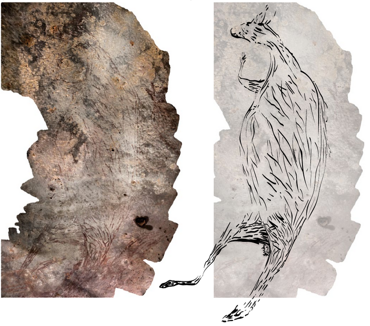 A photograph of the kangaroo rock painting and a drawing of it. Photo by Damien Finch. Drawing by Pauline Heaney.