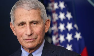 Dr. Fauci Has Donated the 3-D Coronavirus Model He Used to Explain the Pandemic to the Public to the Smithsonian's American History Museum