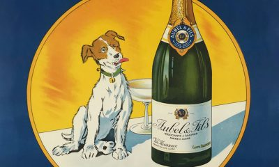 9 Events for Your Art Calendar This Week, From Canine Cocktails With the Museum of the Dog to Carrie Mae Weems's Watermill Festival | Artnet News