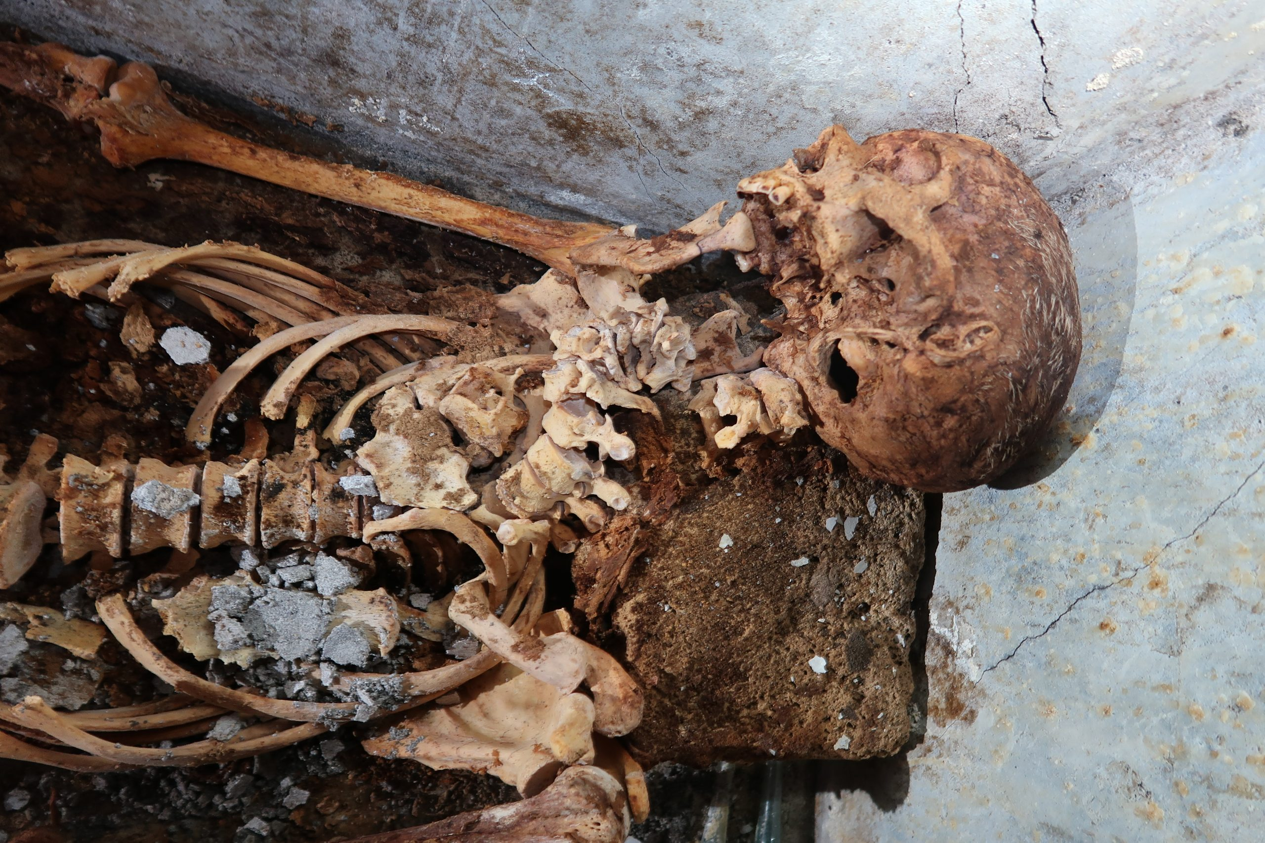 Archaeologists Discovered a Partially Mummified Skeleton That Proves Greek Theater Was Thriving in Roman Pompeii | Artnet News